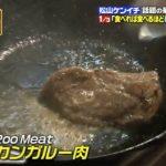 カンガルー肉の販売店は?夜会に登場したアロッサ渋谷の場所も!