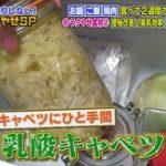 【ナイナイアンサー】乳酸キャベツの作り方!効果や食べる量は?