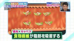 豚肉とキャベツ