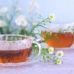 ダイエットティー通販おすすめランキング!痩せるお茶の選び方は?