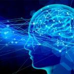マインドフルダイエットのやり方と効果|世界一受けたい授業の脳で痩せる方法